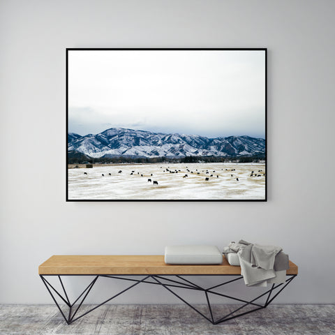 Heard On The Plains | Canvas Art