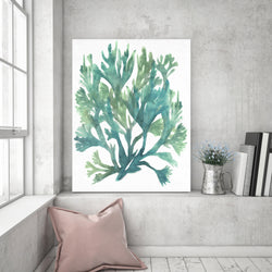 Water Coral | Canvas Art