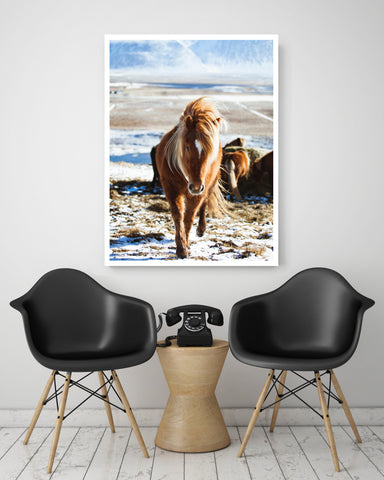 Wild One | Canvas Art