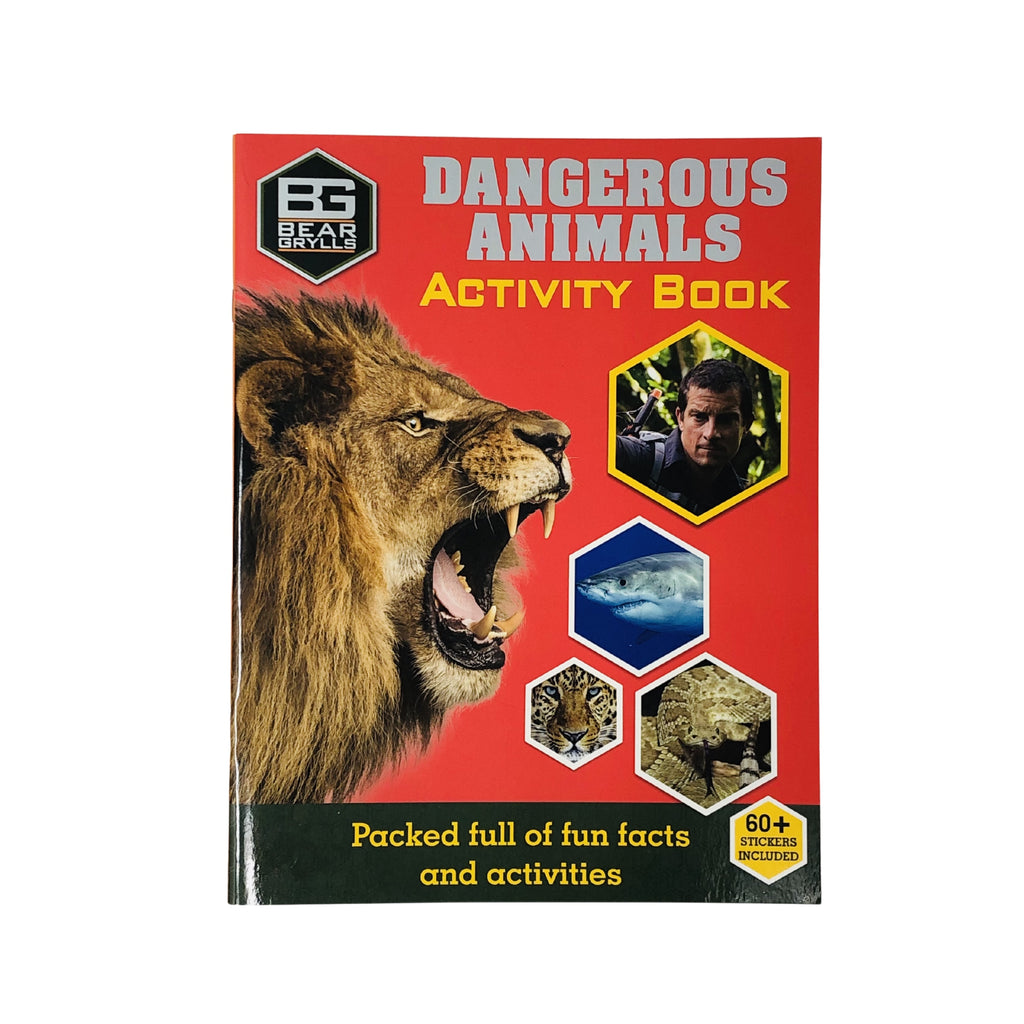 Lockdown Activity Packs - 10 items