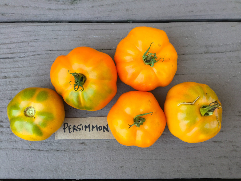 Persimmon Heirloom Tomato Seeds