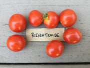 RidgeBridge Farm Heirloom Cherry Tomato Collection