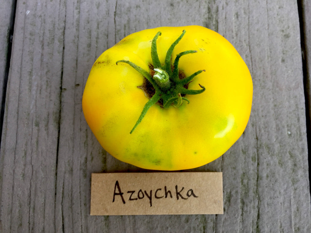 Azoychka Heirloom Tomato Seeds