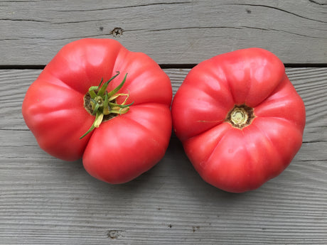 Brandywine Heirloom Tomato Seeds