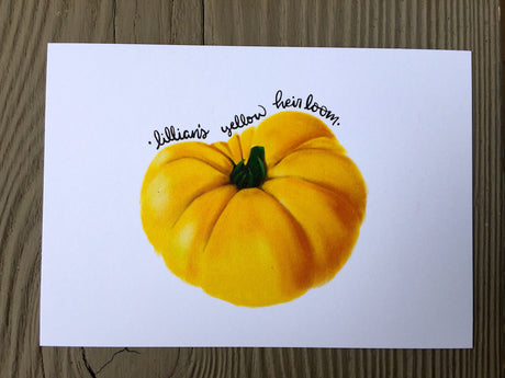 Heirloom Tomato Seed Card - Lillian's Yellow Heirloom