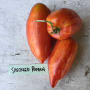 RidgeBridge Farm Heirloom Roma Tomato Collection