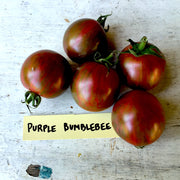 Purple Bumblebee Cherry Tomato Seeds