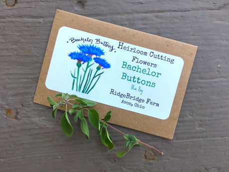 Bachelor Buttons Seed Packet
