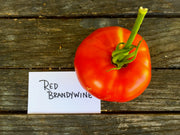 Red Brandywine Tomato Seeds