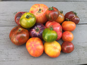 Heirloom Tomato Psychedelic Tie Dye Tomato Seed Collection