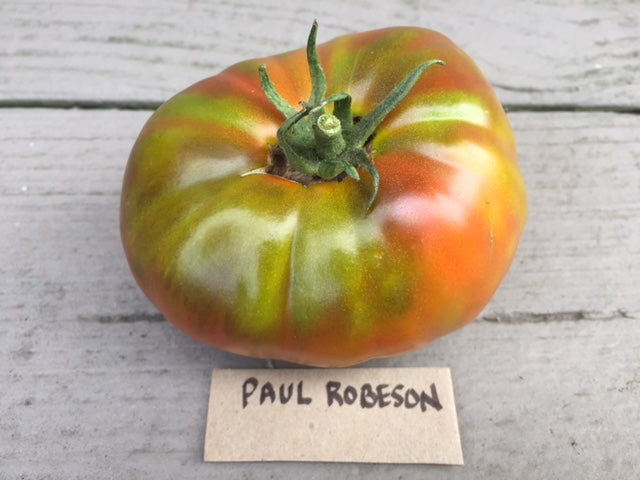 Paul Robeson Heirloom Tomato Seed