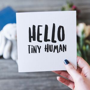 Hello Tiny Human New Baby Card