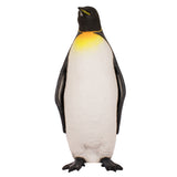 King penguin, life size, winter, ice