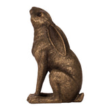 Moon gazing bronze hare
