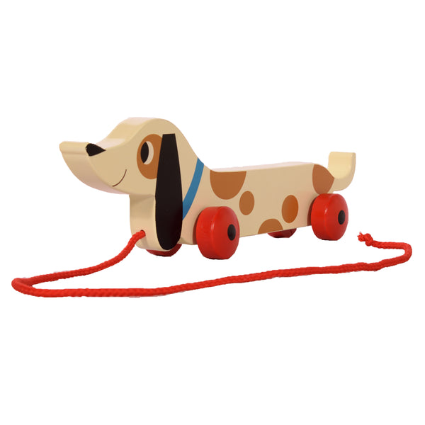 dog, pull along, toy, children