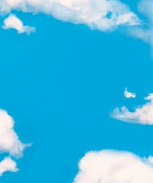 Roar- Sky and Clouds Plastic Backdrop - 886102219317