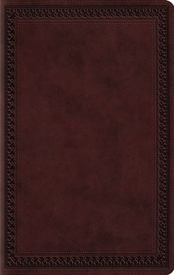 ESV Large Print Value Thinline Bible - 9781433550294
