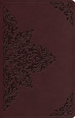 ESV Value Thinline Bible - 9781433565557
