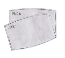 Face Mask Filters PM2.5