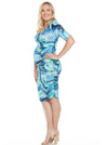 Maternity Bodycon Half Sleeve Print Dress - Blue Print