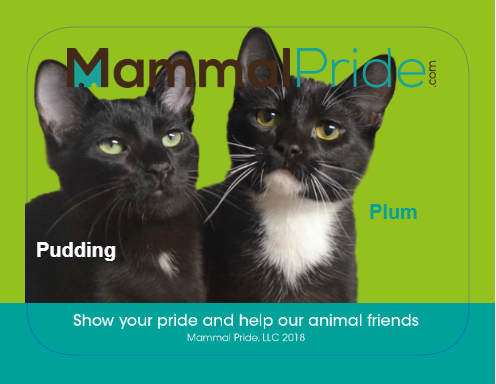 Mammal Pride Sticker - Pudding