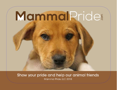 Mammal Pride Sticker - Untitled