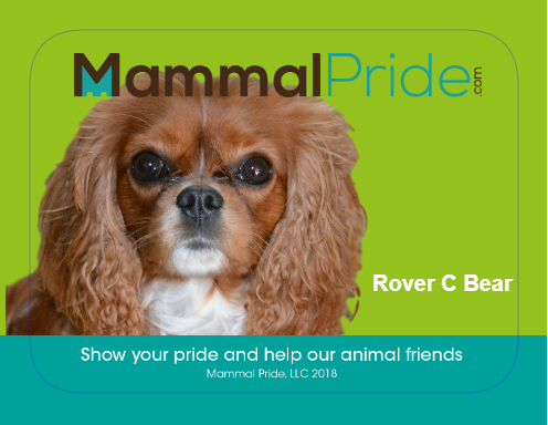 Mammal Pride Sticker - Rover C Bear