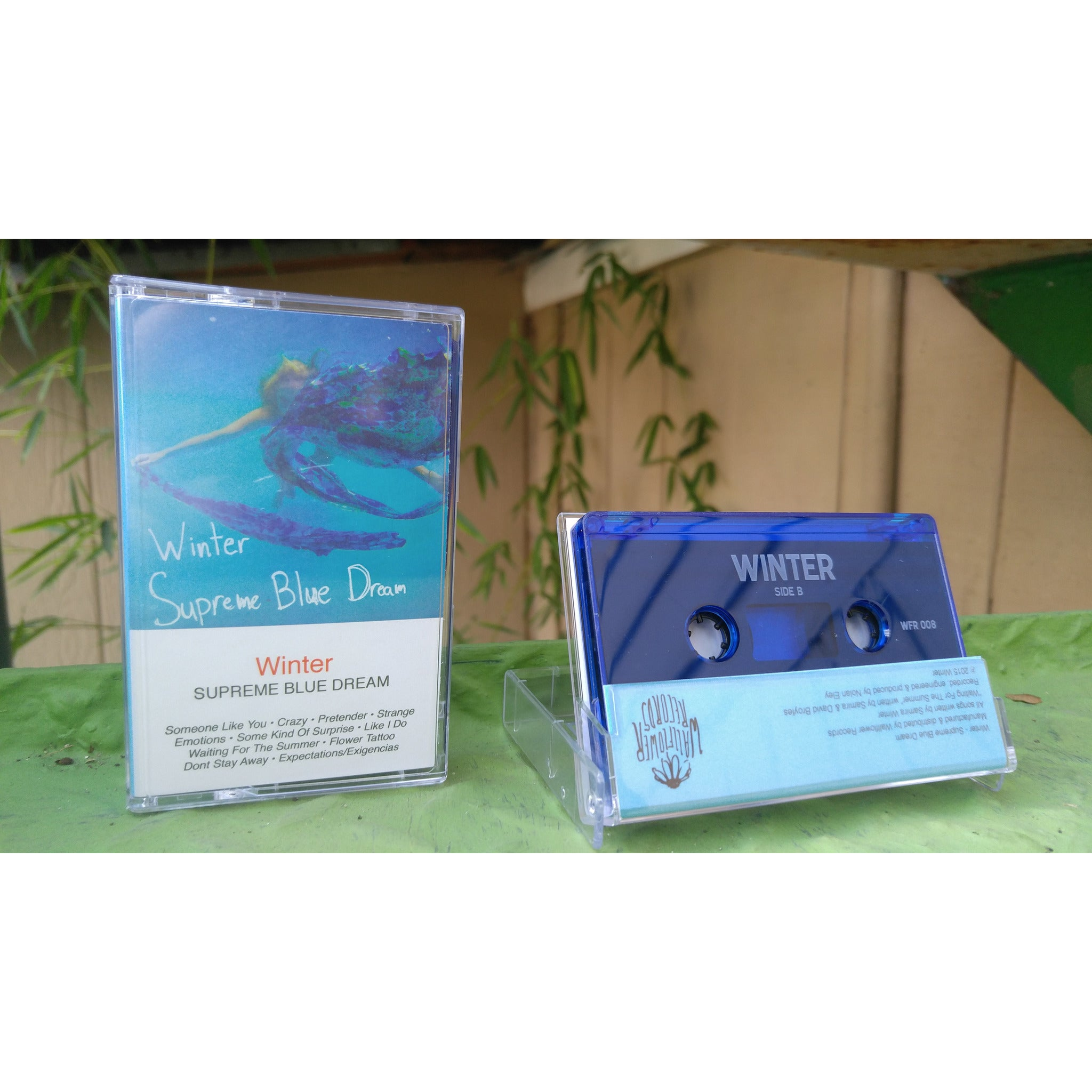 Winter - Supreme Blue Dream (Cassette) - Wallflower Records