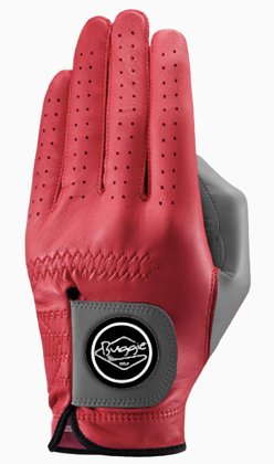 Future Color!  THE GOLF GLOVE