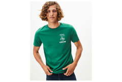 playera pebridge green celtics