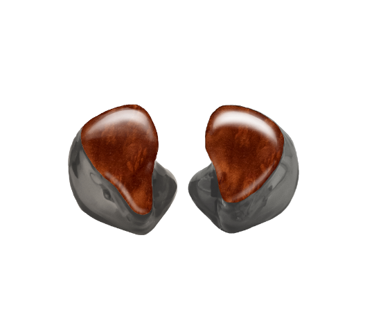 Custom In-Ear