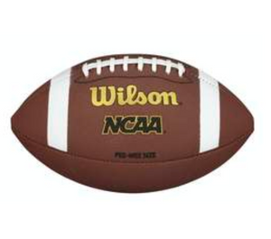 Wilson NCAA Composite Pee Wee Football - K2