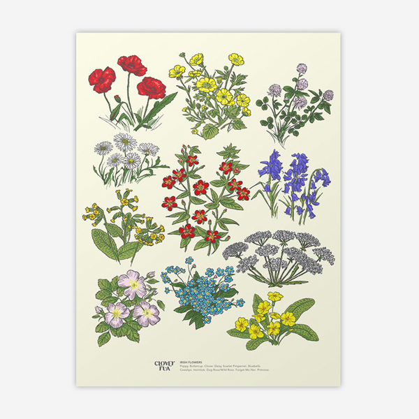 Irish Wildflowers Print by Clover Rua