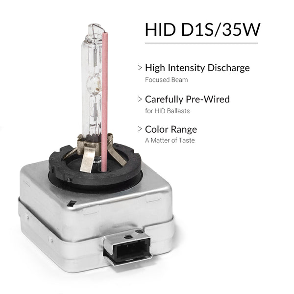 HID replacement bulbs D1S fit all sizes