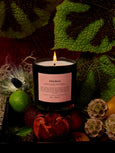 Prunus Candle-BOY SMELLS-Over the Rainbow