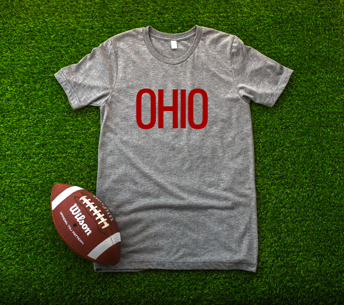 Block Ohio Tee - RED AND GREY - Mistakes on the Lake