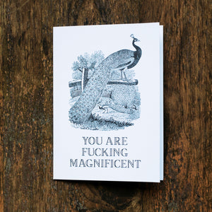 You Are Magnificent Greeting Card