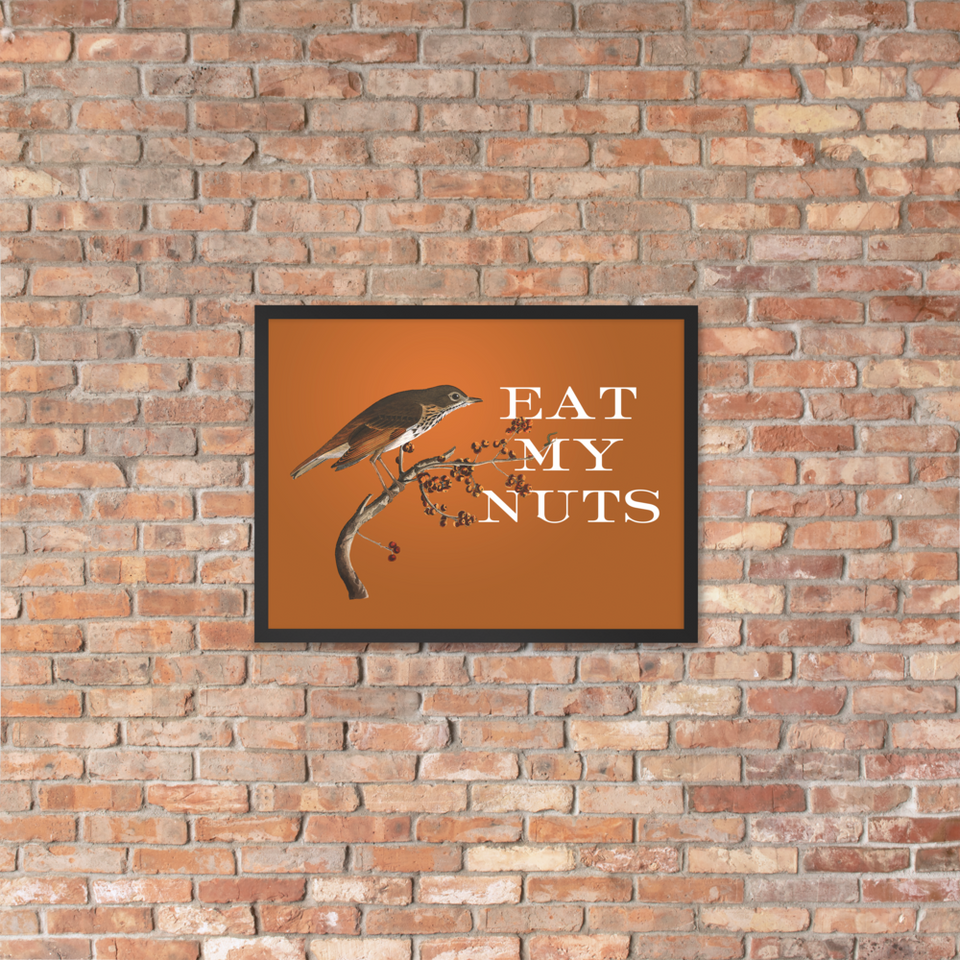 Eat My Nuts Framed Poster
