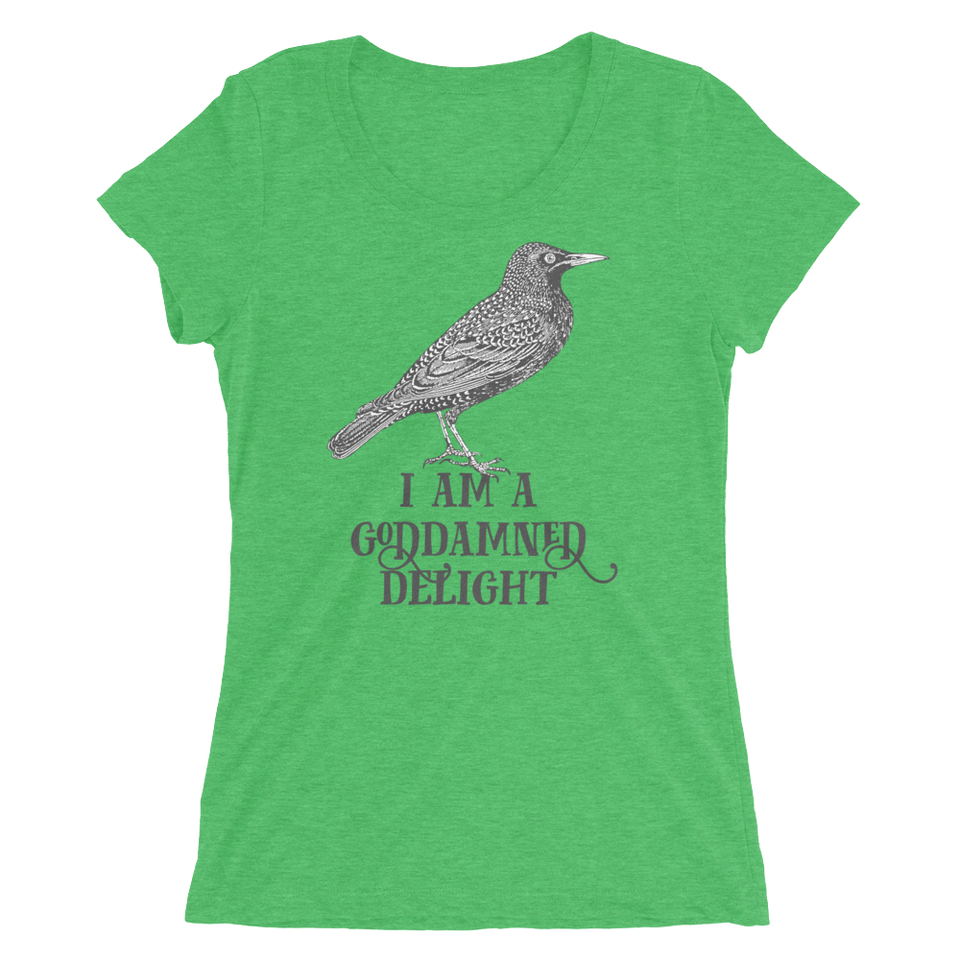 I Am A Goddamned Delight Slim Fit T-Shirt