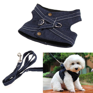 DOG HARNESS VEST & LEASH