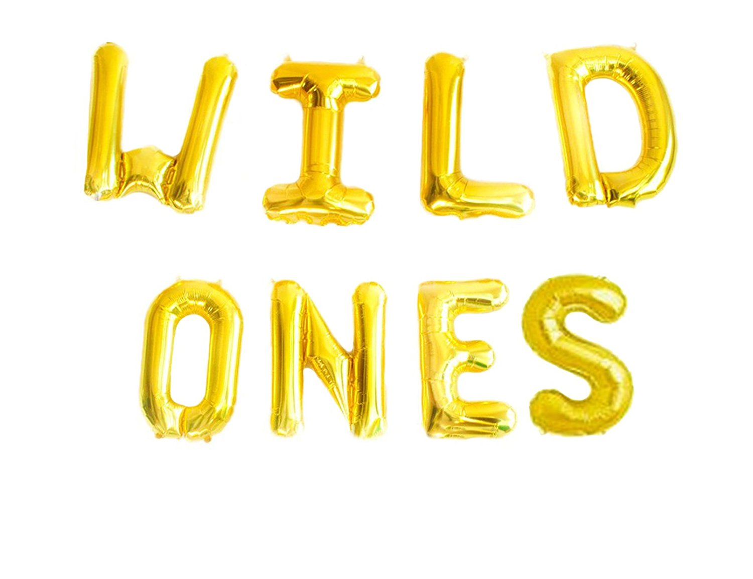WILD ONES BIRTHDAY DECORATION KIT