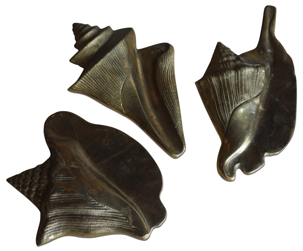 Set of 3 Brass Seashells
