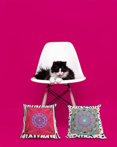 Bohemian Cat Decor-Thumbs Pets