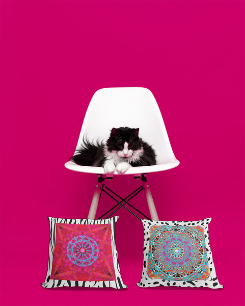 Liven up your home and pet area with the Bohemian Moroccan chic decor