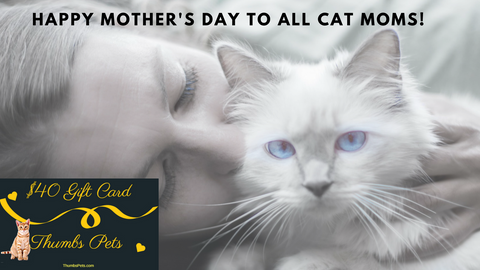 Cat Moms Giveaway Mothers Day