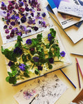 Pressed Flower Art Work - 2 Part Workshop. Saturdays 27th February & 27th March 10am