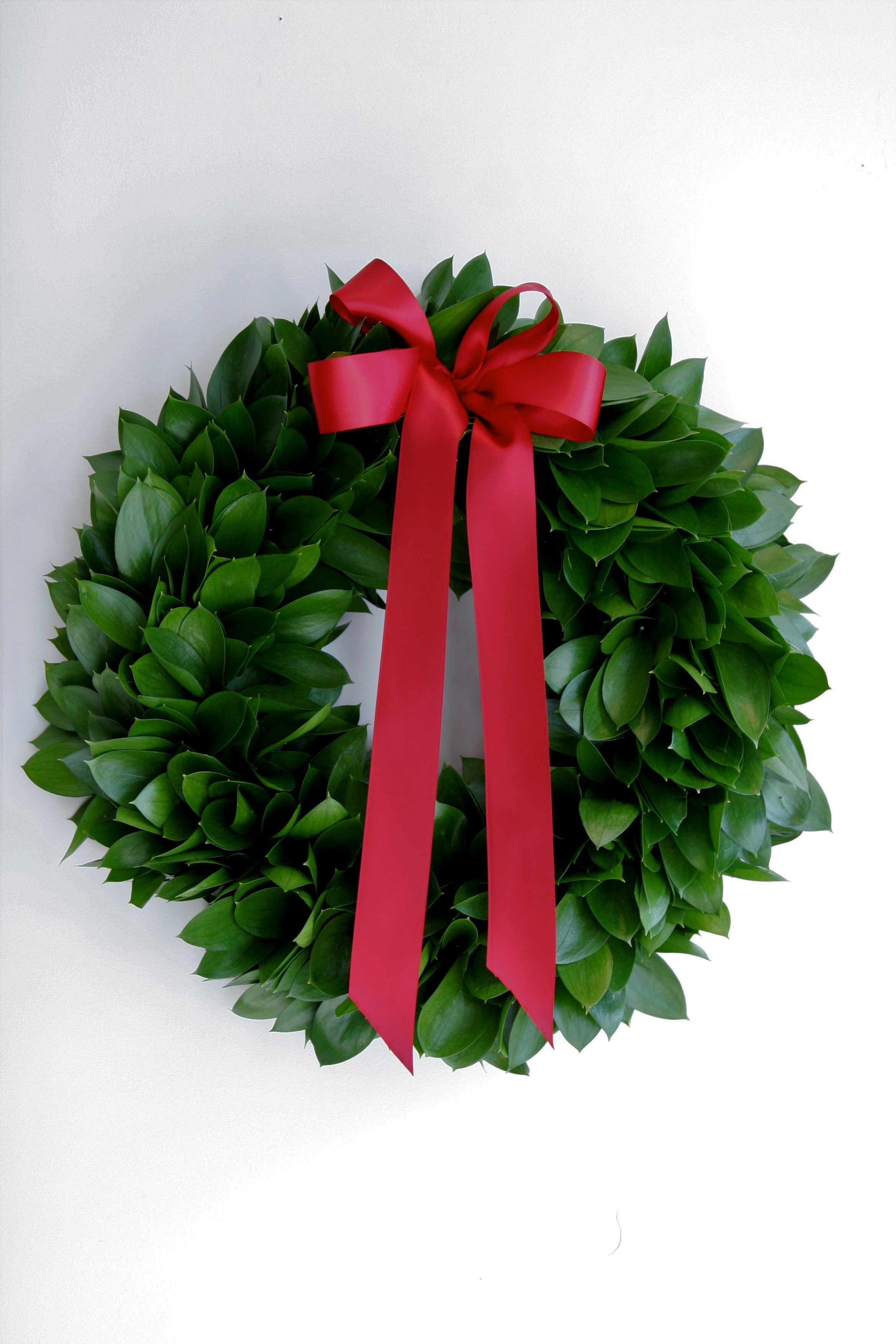Classical Festive Foliage Wreaths in Florists Foam - Saturday 7th December 2019 - 10am-12pm