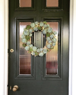 Living Succulent Wreaths - Saturday 30th November 10am-12pm