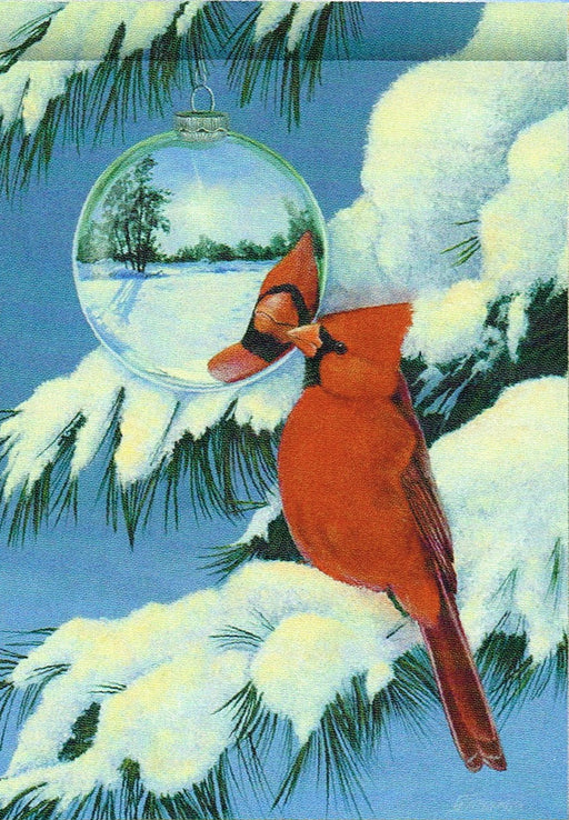 CARDINAL'S REFLECTION