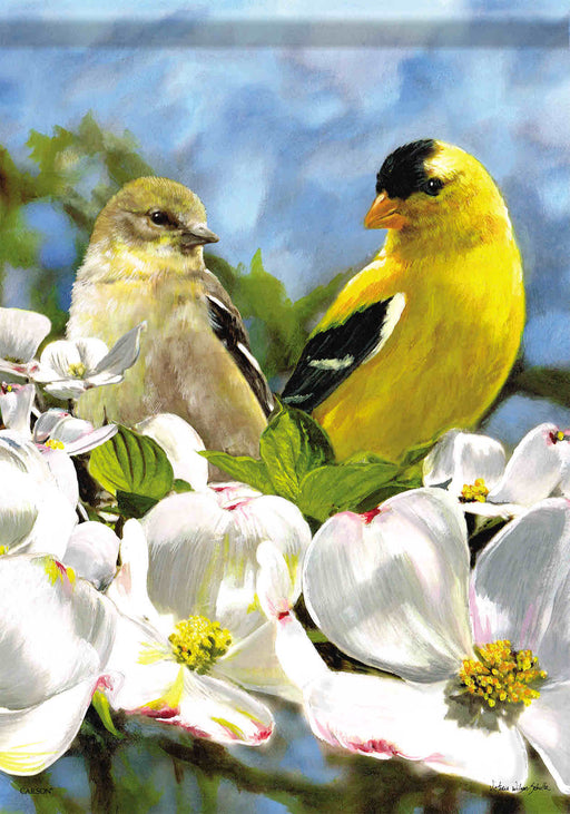 GOLDFINCH & DOGWOOD